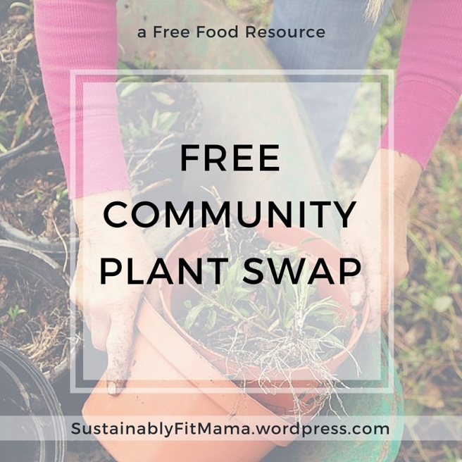 Toledo Community Plant Swap | SustainablyFitMama.WordPress.com