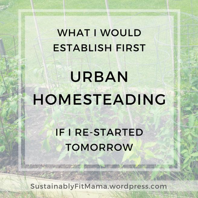 If I Had to Restart My Urban Homestead